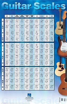 Guitar Scales Poster - 22 inch x 34 inch Guitar NEW 000695768