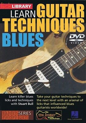 Learn Guitar Techniques: Blues Stevie Ray Vaughan Style Lick Library D 000393006