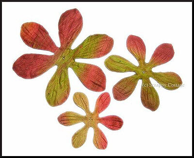 BATIK-Blumen - South Pacific: RASBERRY - Prima Flowers