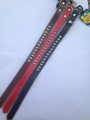 ** PLAYFUL PETS SMALL DOG STUDDED COLLAR VARIOUS COLOURS NEW ** 45cm