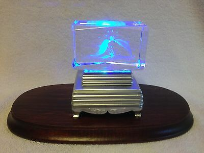 Multi Color LED Lighted Stand Lightbox Base 3D Etched Crystal Dolphins In Love