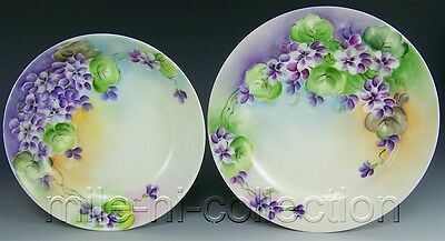 LOVELY LIMOGES HAND PAINTED VIOLETS BOWL & PLATE