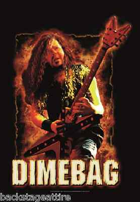 Dimebag Darrell on Fire Pantera 29X43 Cloth Fabric Poster Flag Tapestry-New!
