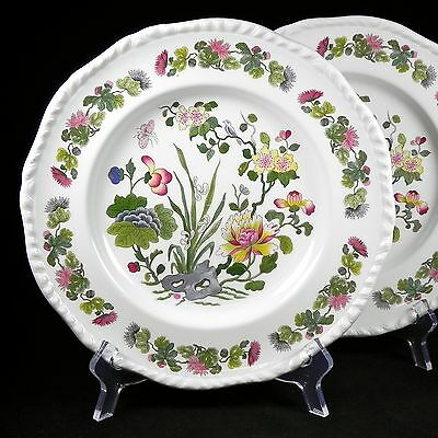 """PAIR of Adams 10.25"""" Dinner Plates Country Meadow Ironstone England Discontinued"""
