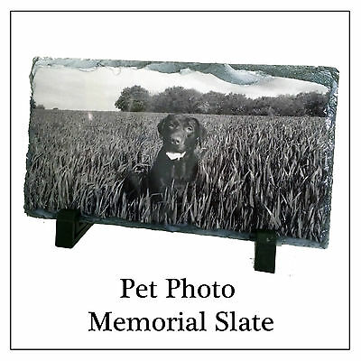 Pet Memorial Photo Plaque - Personalised Slate & Stand For Any Pic, Dog Cat etc