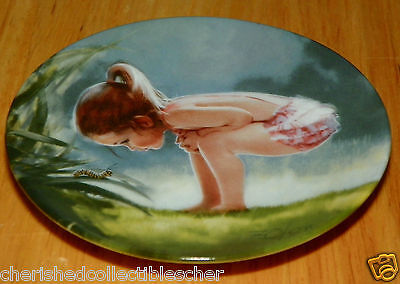 Collector Miniature Plate Donald Zolan Small Wonder Sixth & Final Issue 1987