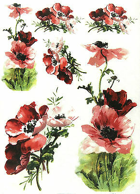 Rice Paper for Decoupage Scrapbooking Sailor Boy Flowers A4 ITD R951