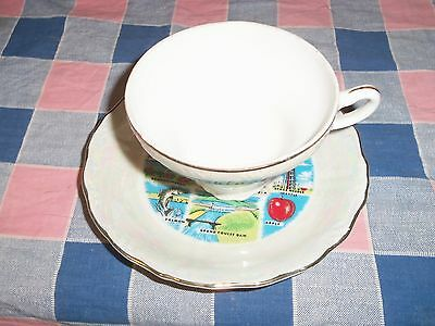 a. Vintage Souvenir Cup & Saucer Washington State  Many Small Scenes