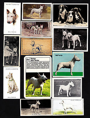 13 Different Vintage Bull Terrier Tobacco/Candy Dog Cards