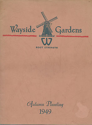 Wayside Gardens 1949 Autumn Planting Catalog Flower Plants Bulbs Color Photos