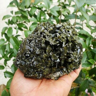 2.7 LB Natural Rare green tourmaline specimens quartz crystal