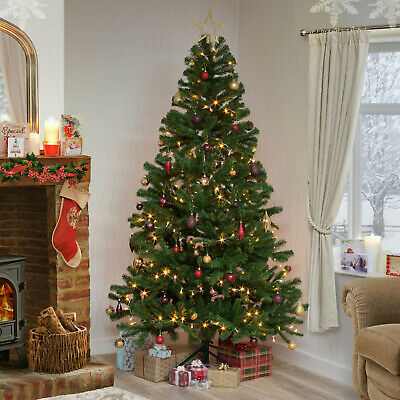 Christmas Tree Xmas Colorado Spruce 4ft 5ft 6ft 7ft 8ft or 10ft Free Delivery
