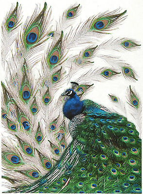 Rice Paper for Decoupage Decopatch Scrapbook Craft Sheet Vintage Peacock