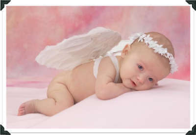 262 Pink & Lilac Reborn/baby Auction Template