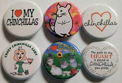 I Love Chinchillas Badge Button Pin Party Favors Stocking Stuffers set of 6