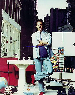 Jerry Seinfeld Great 8X10 Photo From Classic Tv Series