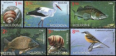 Moldova - 2014 - Fauna, Birds, Fishes and Snails, 6v
