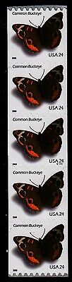 #4002 Common Buckeye PNC5  Pl #V1111 - MNH
