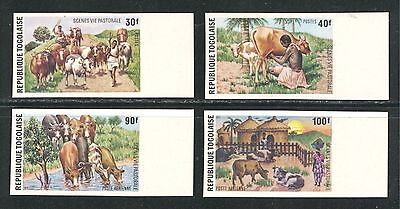 DOMESTIC FAUNA ANIMALS CATTLE ON TOGO 1974 Sc 890-891,C238-C239 IMPERFORATE, MNH