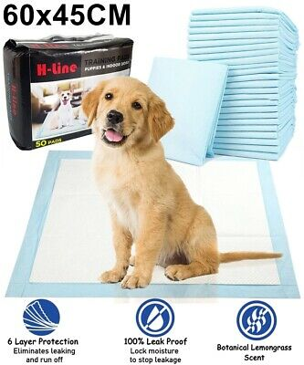 100 X Dog Puppy House Large Absorbent Training Trainer Pads Toilet Wee