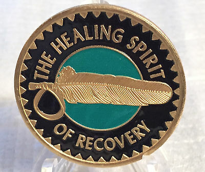 Healing Spirit of Recovery Medallion Chip Coin AA NA Great Spirit Prayer Color