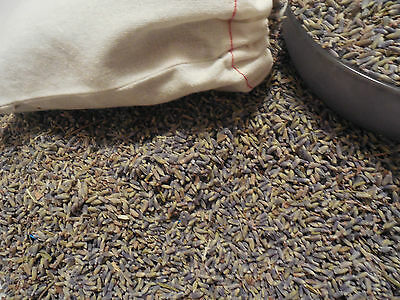 16 oz LAVENDER BUDS  1 lb + FREE BathTeaBags *STRONG Lavender Aroma (Therapy)!*