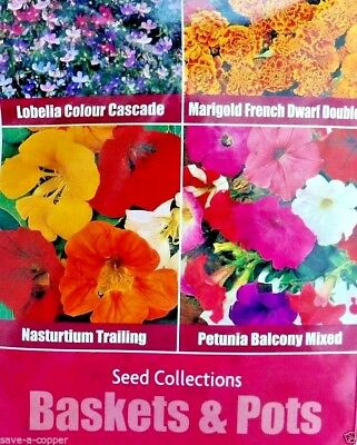 Baskets & Pots 4 In 1 Seed Collection  Multi Pack 1665 High Quality Flower Seeds