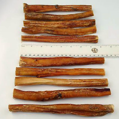"""10 x EXTRA LONG  8"""" Inch 20cm THICK Bulls Pizzles Bully Sticks Dog Treat Pizzle"""