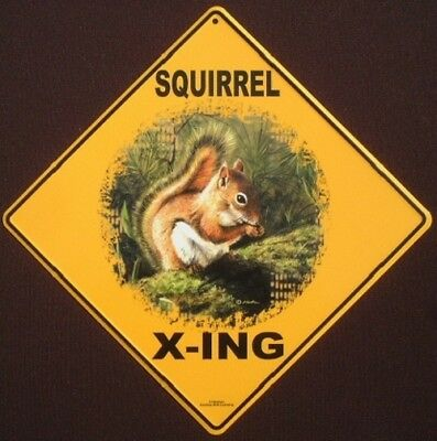 SQUIRREL ALUMINUM  X-ING Sign decor painting picture signs home animals WILDLIFE