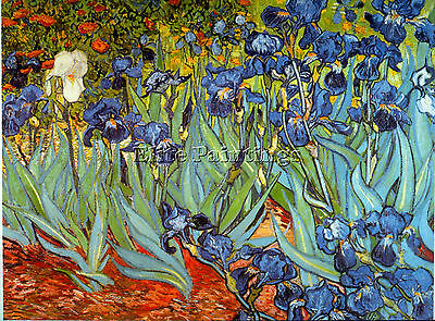 Irises Artist Painting Reproduction Handmade Oil Canvas Repro Art Deco Repro