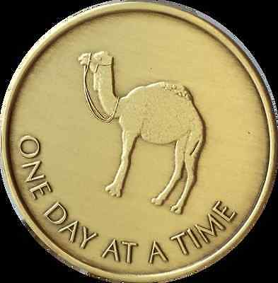 Camel One Day At A Time Greatest Possession 24 Hours Medallion Sobriety Chip AA