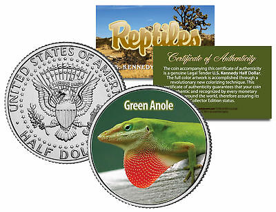 GREEN ANOLE * Reptiles * JFK Half Dollar U.S. Colorized Coin CAROLINA LIZARD
