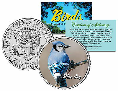 BLUE JAY BIRD JFK Kennedy Half Dollar US Colorized Coin