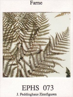 Peddinghaus (Various Scales) Farne (Fern) for Diorama Groundwork and Jungle 73