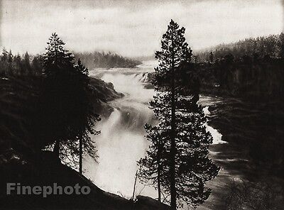 1924 Vintage SCANDINAVIA Photo Art Sweden Porjus Falls Forest Lapland Landscape