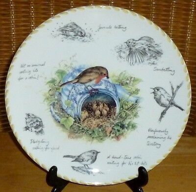 WEDGWOOD BIRDWATCHERS NOTEBOOK SERIES PLATE / THE ROBIN by ERIC ROBSON