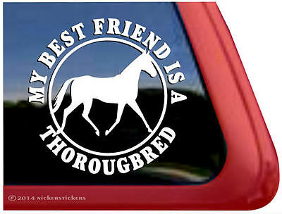 My Best Friend is a Thoroughbred  Vinyl Horse Trailer Decal Sticker