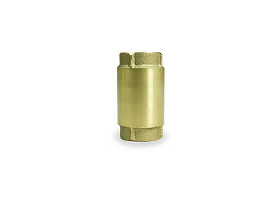 Pentair Water Flotec Simer TC2505LF-P2 1-1/4in. Brass Check Valve