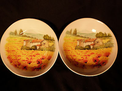"Pair of Hand Decorated Ceramica 9"" Bowls"