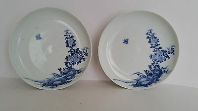 Pair of 19th Century Japanese blue and white Dishes
