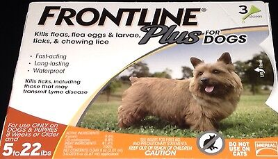 Merial Frontline Plus For Dogs 5 To 22 lbs. 6 Month Supply!! (x2 3mo Boxes)