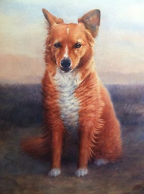 BEAUTIFUL ORIGINAL HAND PAINTED WATERCOLOR ON PAPER PAINTING DOG BY G.C.MILLER