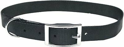 NEW Dogit Nylon Double Ply Dog Collar with Buckle  X-Large  24-Inch  Black