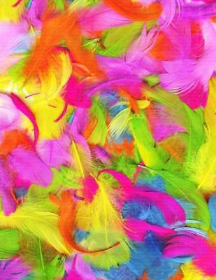 Extra Large Packet Of Easter Feathers For Craft And Bonnets