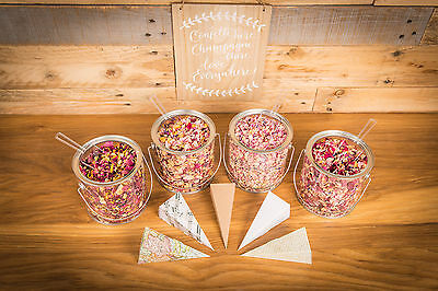 Wedding Dried Petal Confetti 50 Guests Sign & Self Assembly Cones Biodegradable