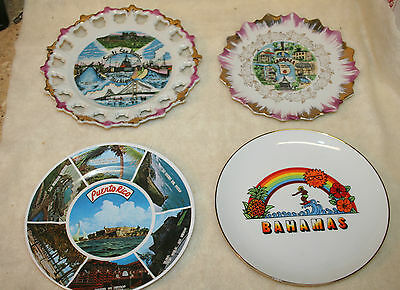 Collectible Souvenir State Collector Plates and Dishes