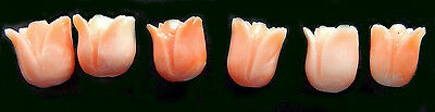 Carved Natural Coral Flowers - Salmon Colors  Roses  Assorted Sizes  One Piece