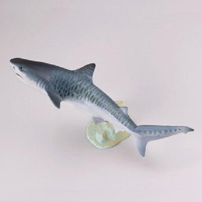 KAIYODO Capsule Museum Q Yaeyama Islands Tiger Shark Fish Figure