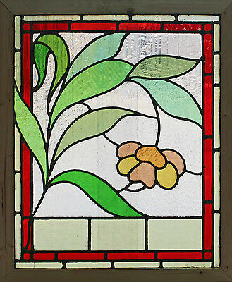 Antique Stained Glass Window Eight Colors of glass Ruby Bordered Bloom    (2641)