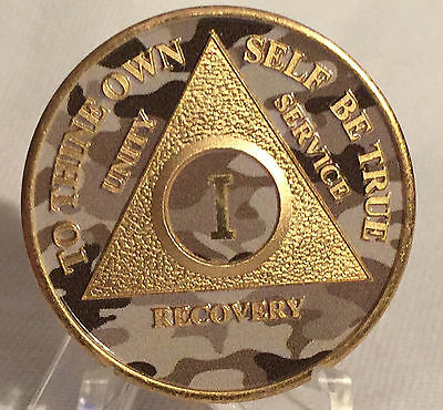 Camo & Gold Plated One Year AA Chip Alcoholics Anonymous Medallion Coin 1